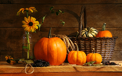 Holiday setting with pumkins and other gourds